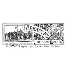 The state banner of arkansas the bear state vector