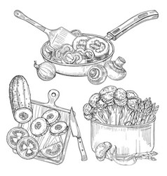 cooking vegetables dishes and vegetables sketch vector image