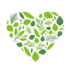 heart green tree leaves spring season element vector image
