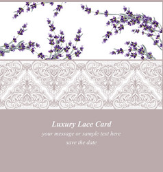 lavender delicate lace card springtime summer vector image