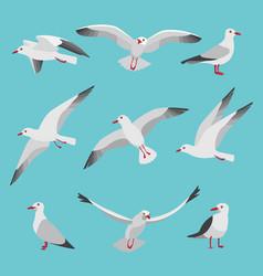 set atlantic seagulls in cartoon vector image
