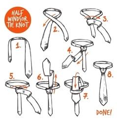 Tie Knot Sketch vector