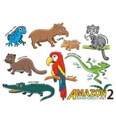 Set of Cute cartoon Animals and birds in the Amazo vector image vector image