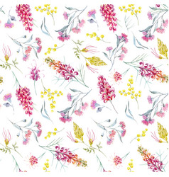 watercolor australian grevillea pattern vector image