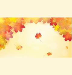 Autumn maple leafs on autumn background vector