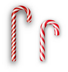 Candy canes isolated on white vector