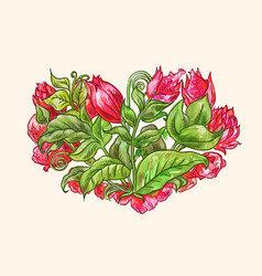 watercolor floral heart with red tropical flower vector image