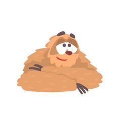 cute cartoon smiling sloth character lying funny vector image vector image