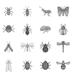 Insect icons set gray monochrome style vector image vector image