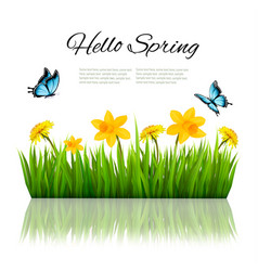 spring nature background with green grass flowers vector image