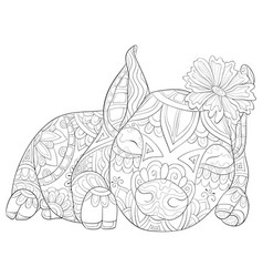 Adult coloring bookpage a cute pig with ornaments vector