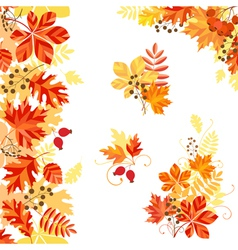 Bright autumn vector
