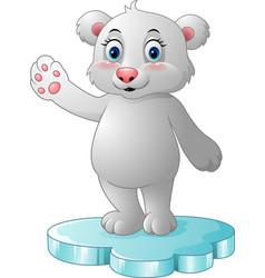 Cartoon polar bear standing on floe vector