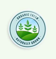 Organic fresh naturally grown food label design vector
