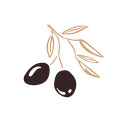 stylized olive branch silhouette with olives and vector image