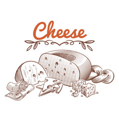 Swiss cheese sketch drawing vintage art vector