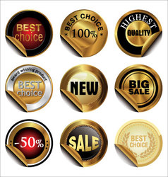 Collection of Premium Quality and Guarantee Labels vector image vector image
