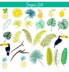 Tropic clipart set vector image