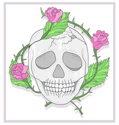 Skull and roses vector image vector image