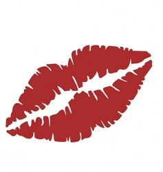 close up of lips vector image