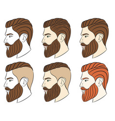 man with beard hipster vector image