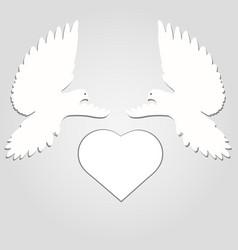 pigeons wedding doves vector image