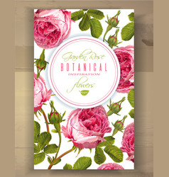 Rose vertical banner vector