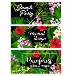 tropical leaf palm jungle flowers summer paradise vector image