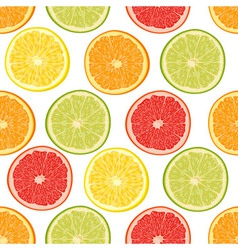 Fresh colorful citrus fruits seamless pattern vector image