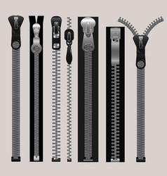 Zippers fastener set vector