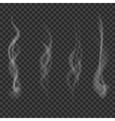 Transparent Smoke Set Isolated vector image