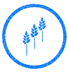 wheat plants rounded grainy icon vector image vector image