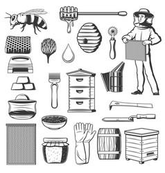 apiary and beekeeping tools honey production vector image