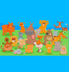 dogs and cats cartoon characters group vector image
