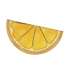 drawing slice orange citrus fruit harvest vector image