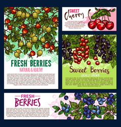 Garden and wild berry fruits posters vector