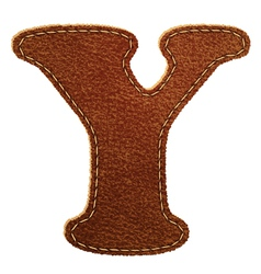 Leather textured letter Y vector image