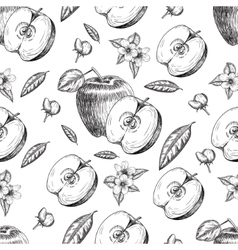 Seamless of hand drawn apple Vintage sketch style vector image