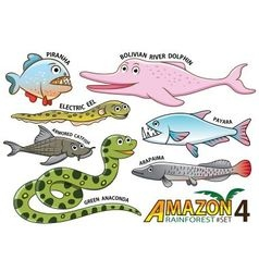 set cute cartoon animals in amazon vector image