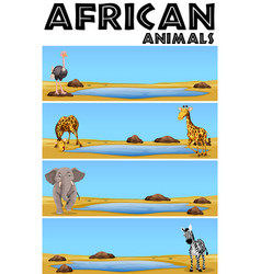 African animals by the pond vector