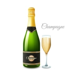 Champagne Realistic Set vector image