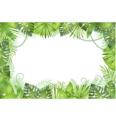 Jungle background tropical leaves frame vector