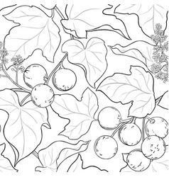 Kukui branches pattern on white background vector