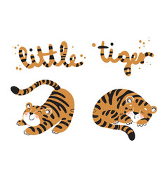 little tigers stretching and sleeping vector image