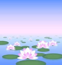 Lotus pond vector