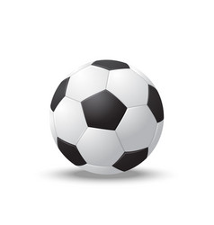 realistic detailed 3d soccer ball vector image