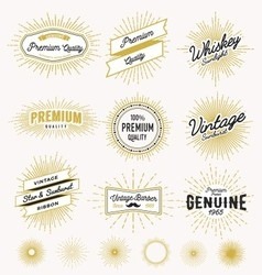 Set of vintage sunburst frame and label design vector