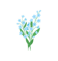 Two small branches blue forget-me-not flowers vector