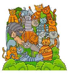 cat characters group cartoon vector image vector image