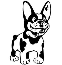 cartoon french bulldog black white vector image vector image